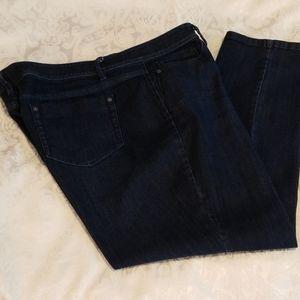 J.Jill Denim Authentic Fit Slim Ankle Blue Jean 18